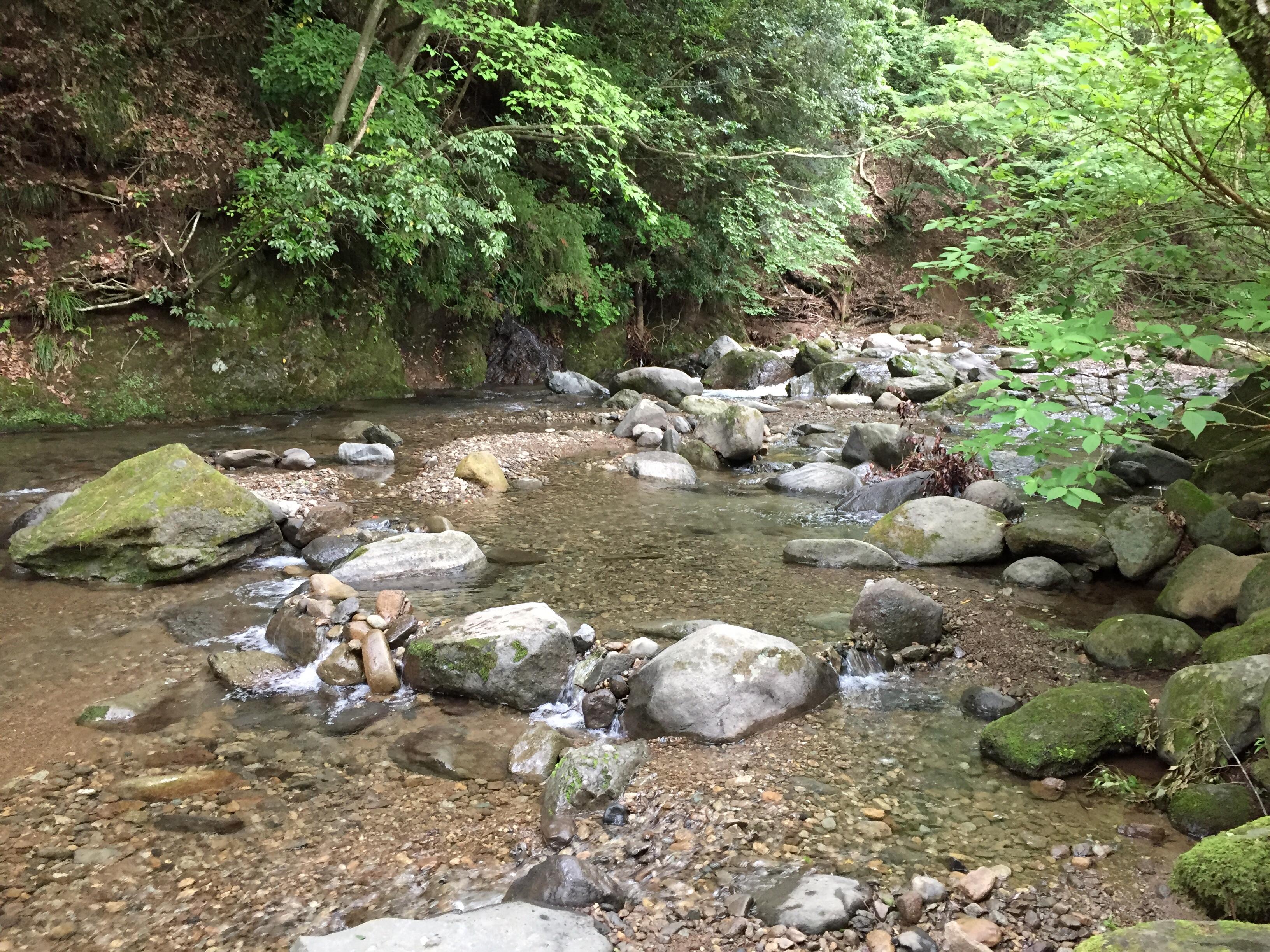 相模原・町田・八王子で自然素材の健康住宅を提供する相陽建設のファミQフェスタ会場は、自然に囲まれた場所です