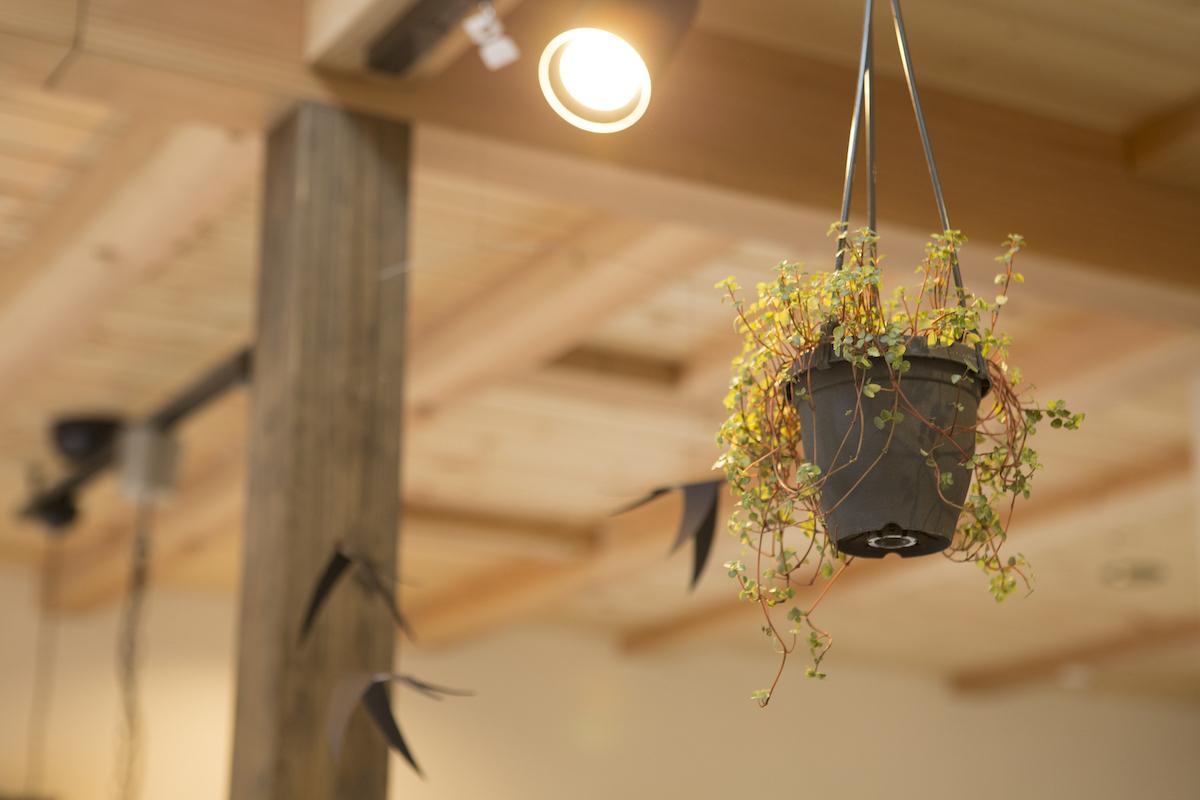 天井から吊るされた小物